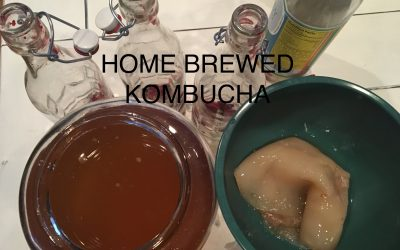 Home Brewed Kombucha